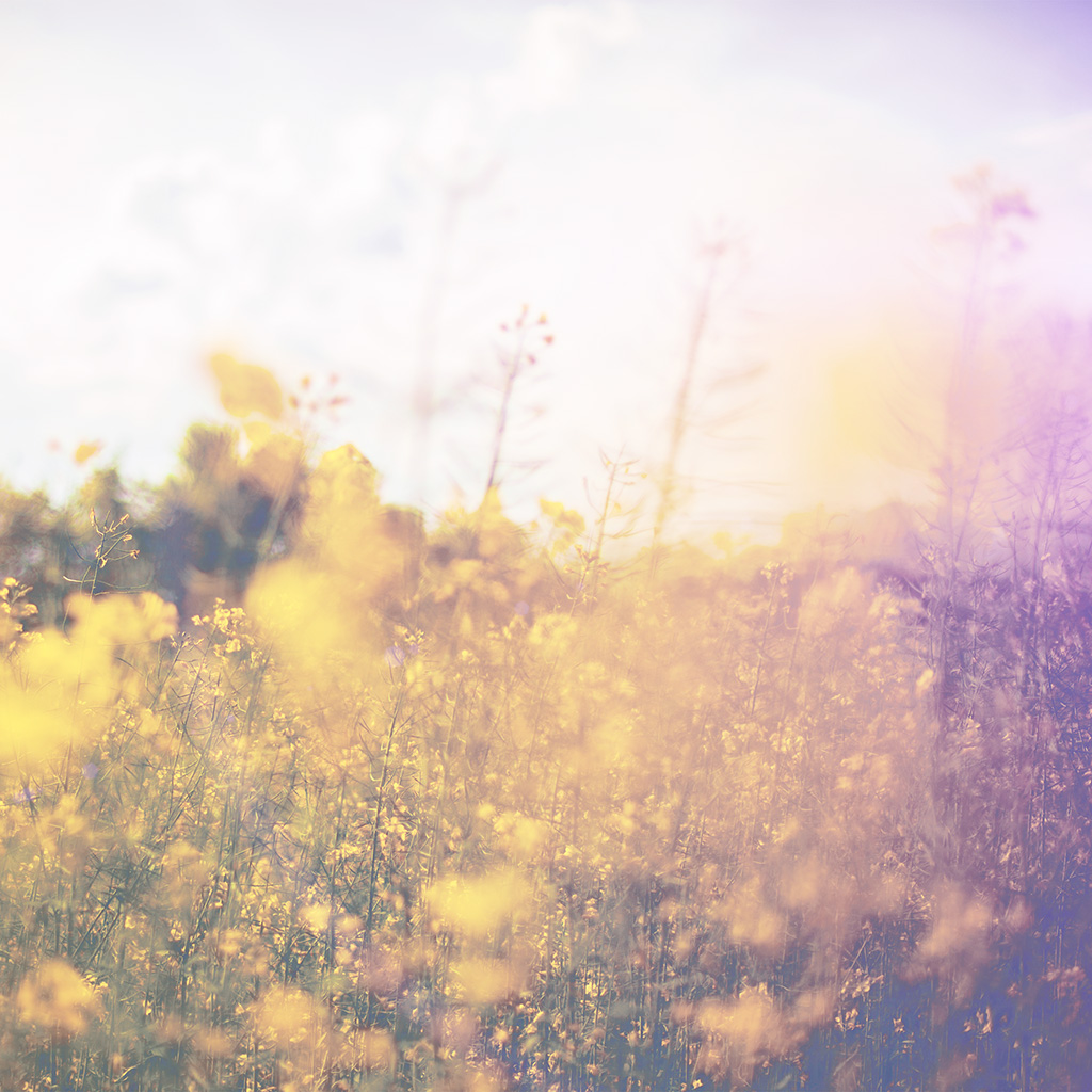 wallpaper-mw23-nature-green-flower-bokeh-spring-white-happy-flare-wallpaper