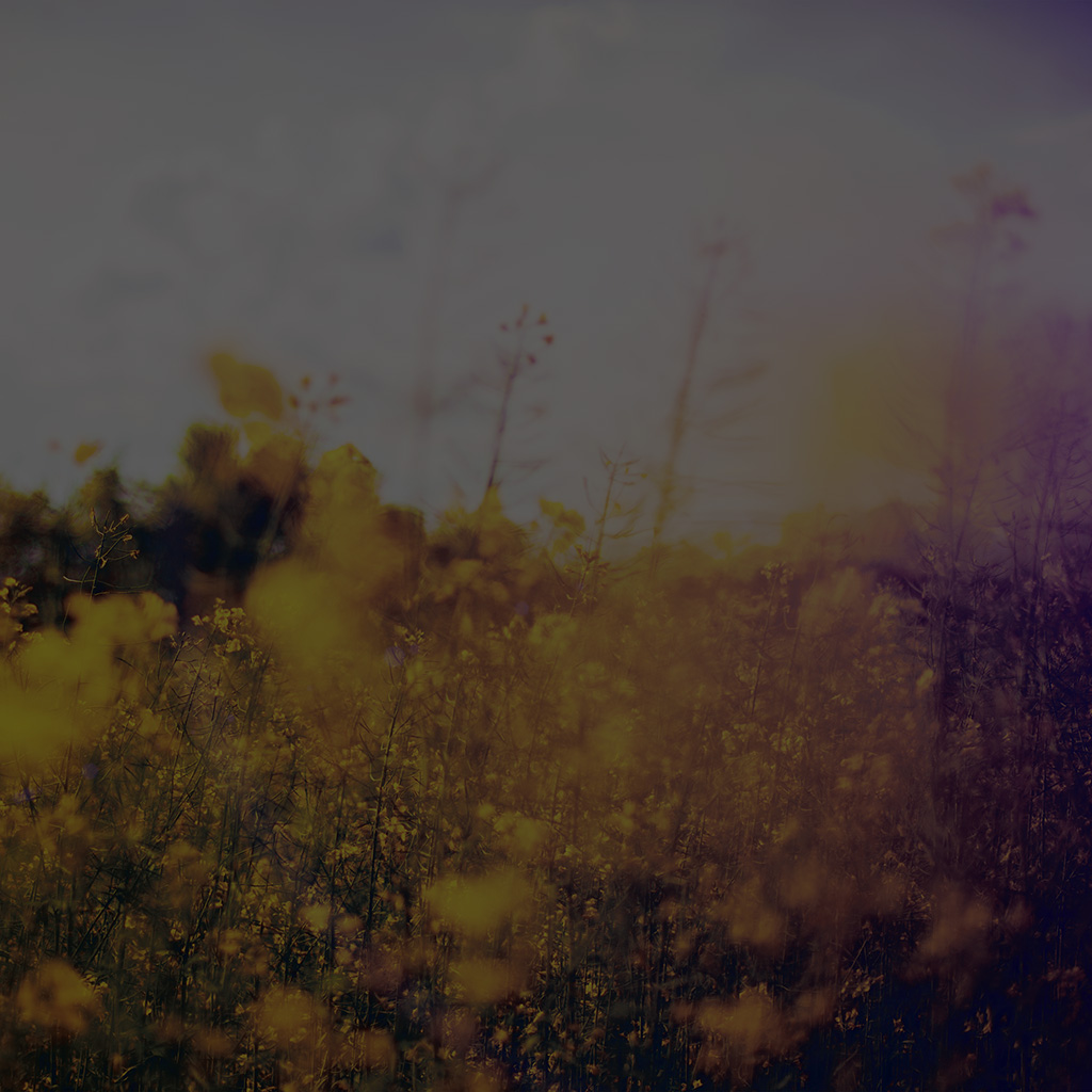 android-wallpaper-mw24-nature-green-flower-bokeh-spring-dark-happy-flare-wallpaper