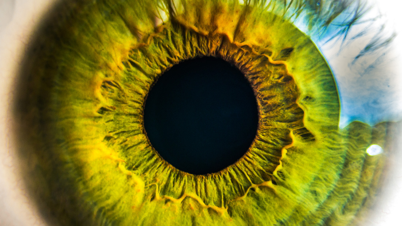 desktop-wallpaper-laptop-mac-macbook-airmw29-eye-human-nature-pupil-body-science-wallpaper