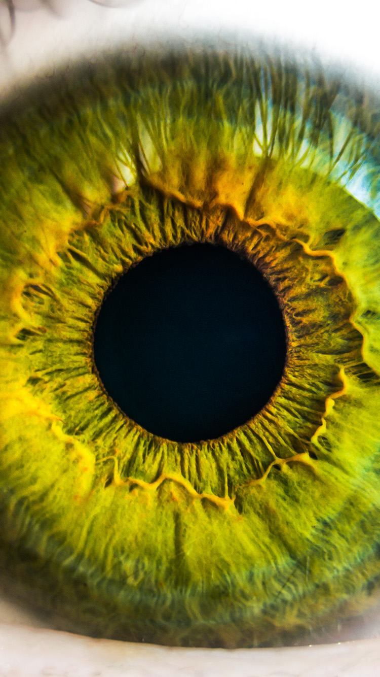iPhonepapers.com-Apple-iPhone8-wallpaper-mw29-eye-human-nature-pupil-body-science