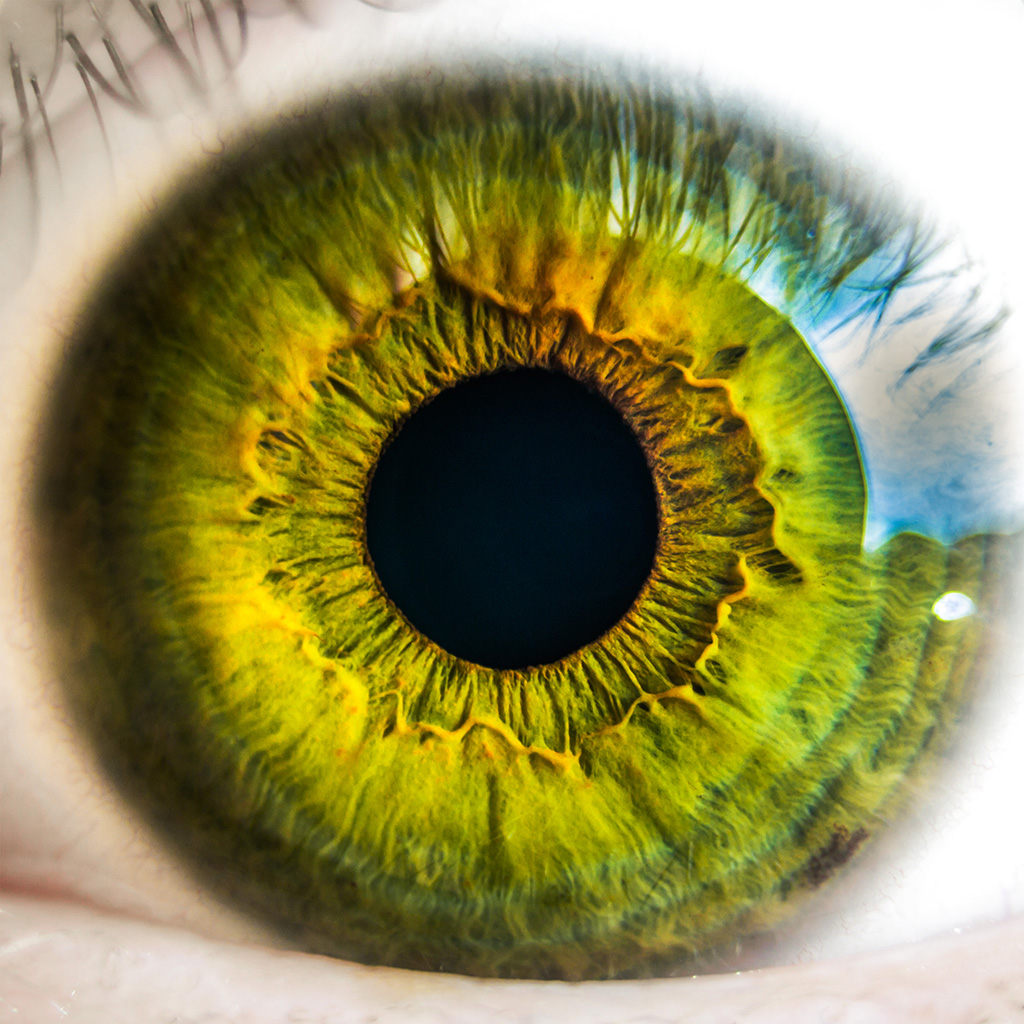 android-wallpaper-mw29-eye-human-nature-pupil-body-science-wallpaper