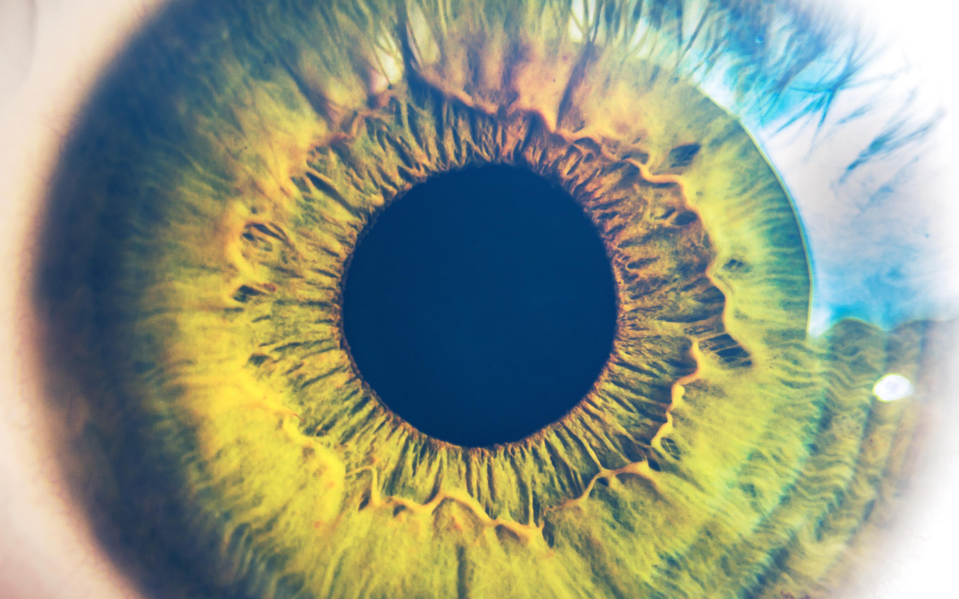 Tratamiento con células madre para la degeneración macular