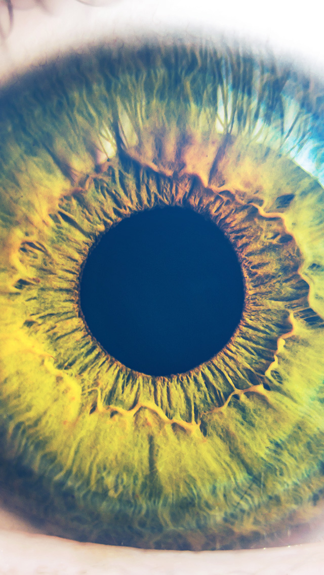 freeios8.com-iphone-4-5-6-plus-ipad-ios8-mw30-eye-human-nature-pupil-body-science-flare-blue