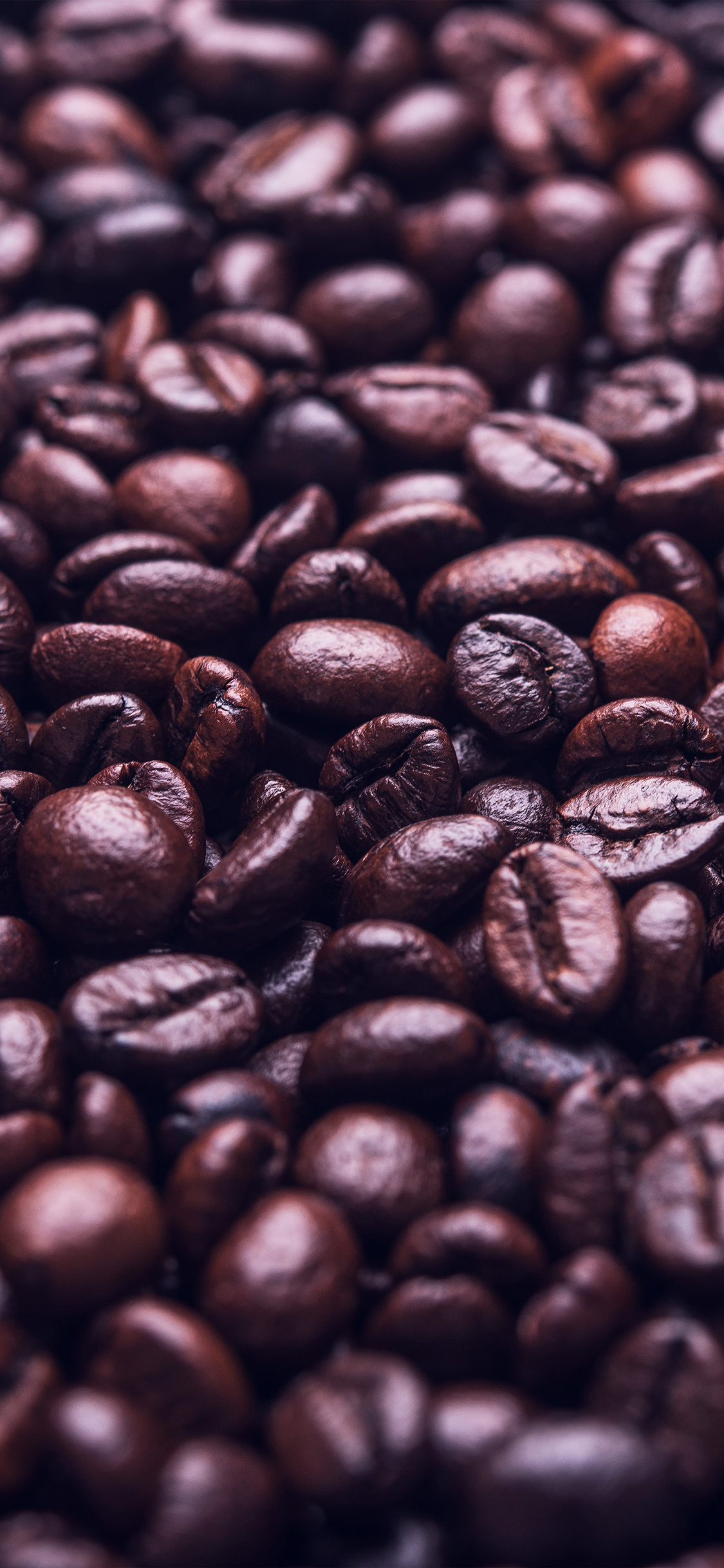 iPhonexpapers.com-Apple-iPhone-wallpaper-mw39-coffee-holic-brown-food-soft-blue