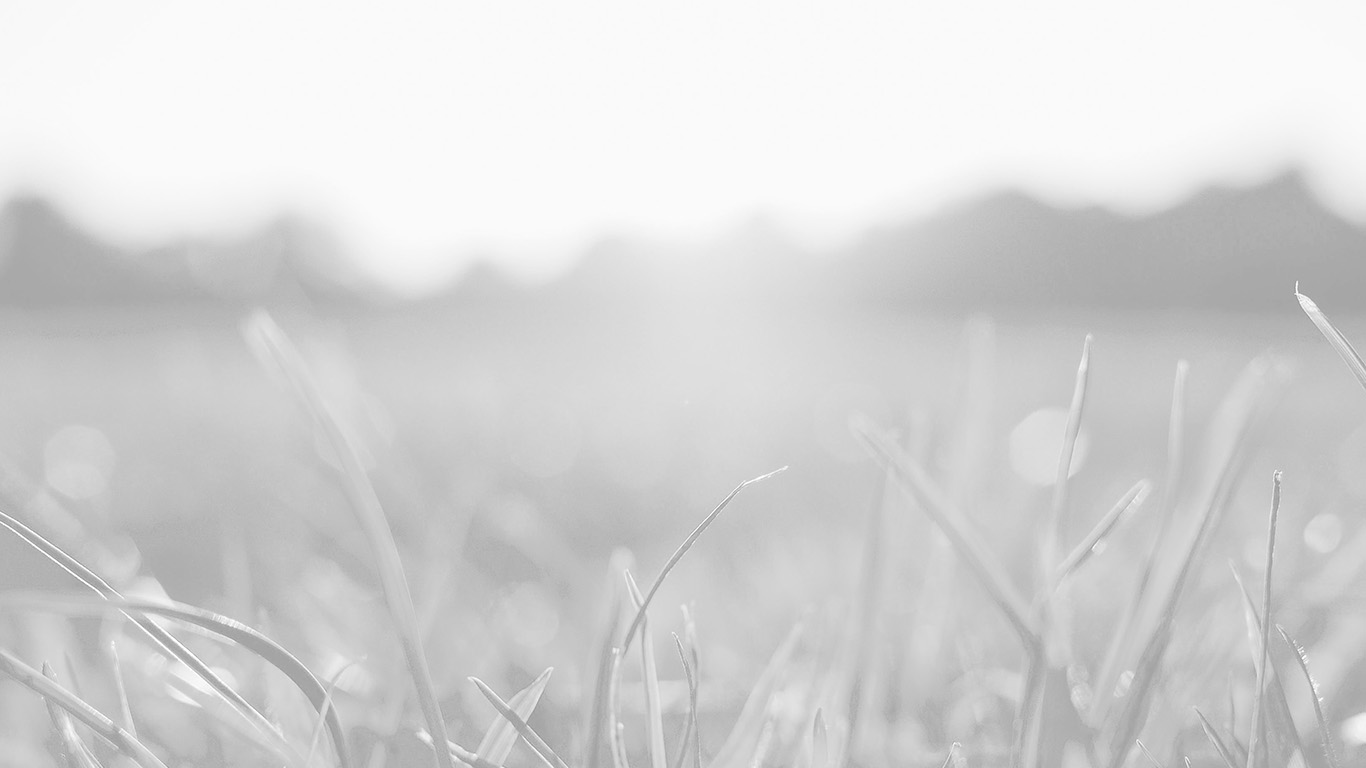 desktop-wallpaper-laptop-mac-macbook-air-mw49-grass-white-bokeh-light-summer-nature-wallpaper