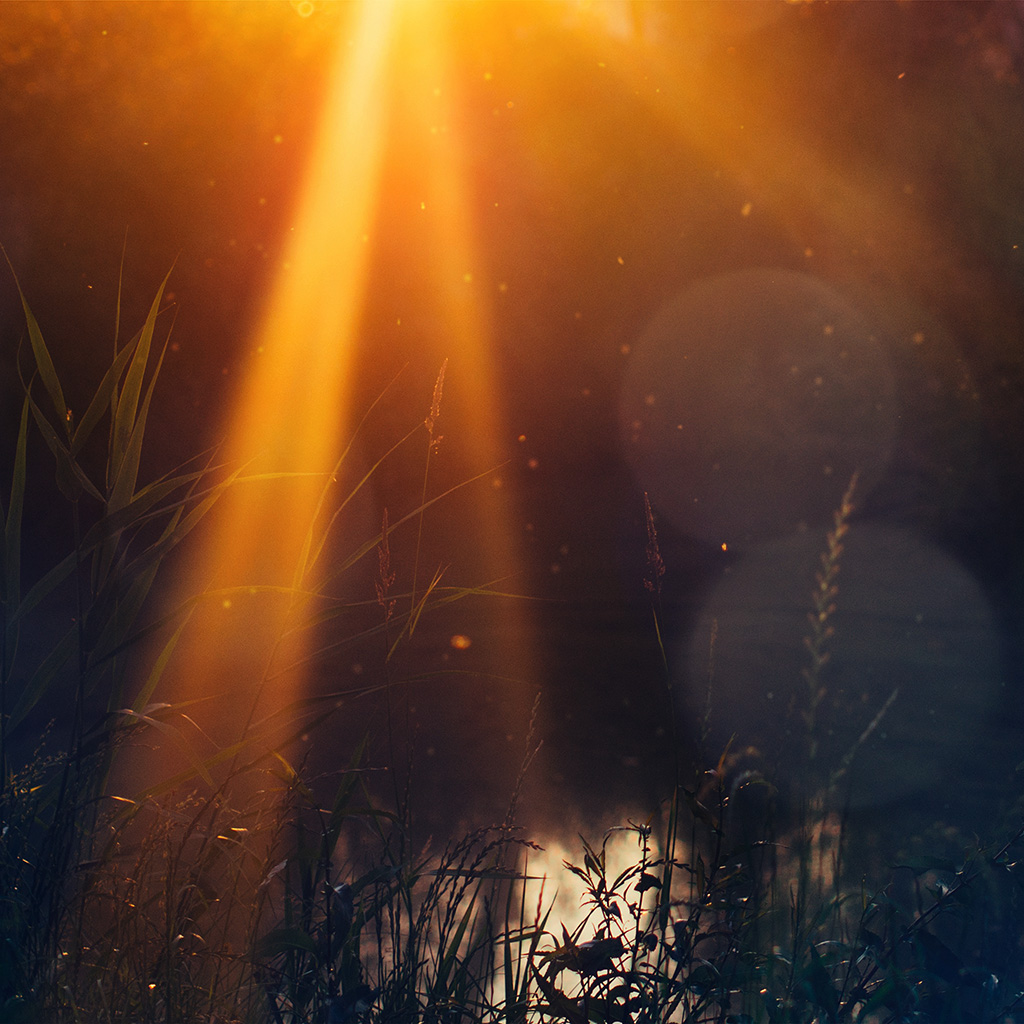 android-wallpaper-mw72-god-light-loves-you-nature-flower-lake-flare-wallpaper