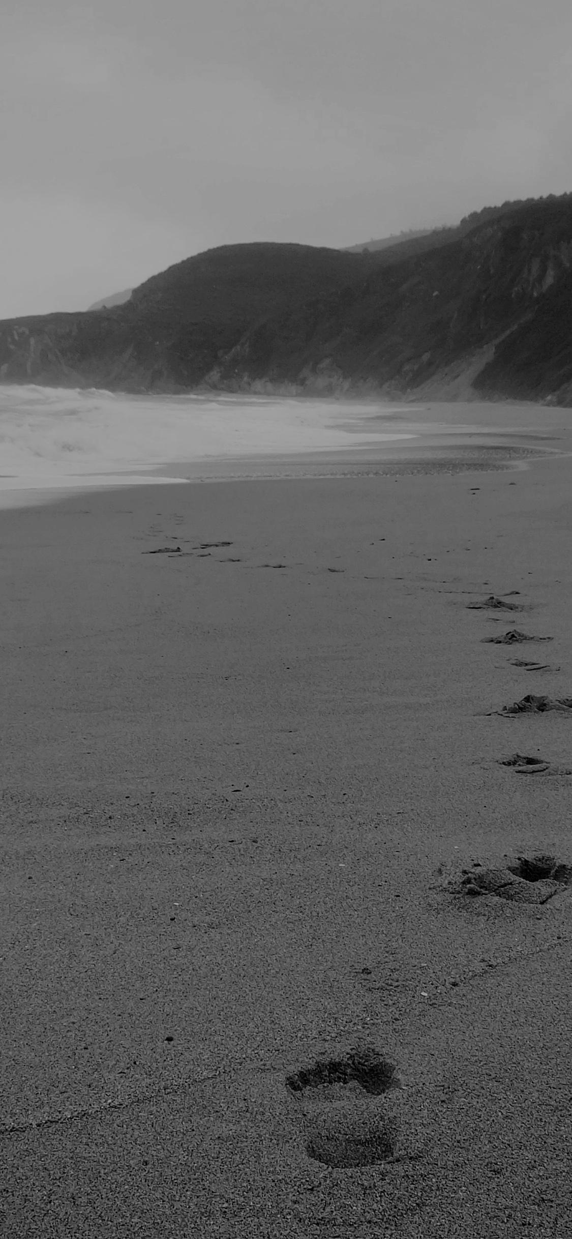mw84 naked walk sea beach nature pure