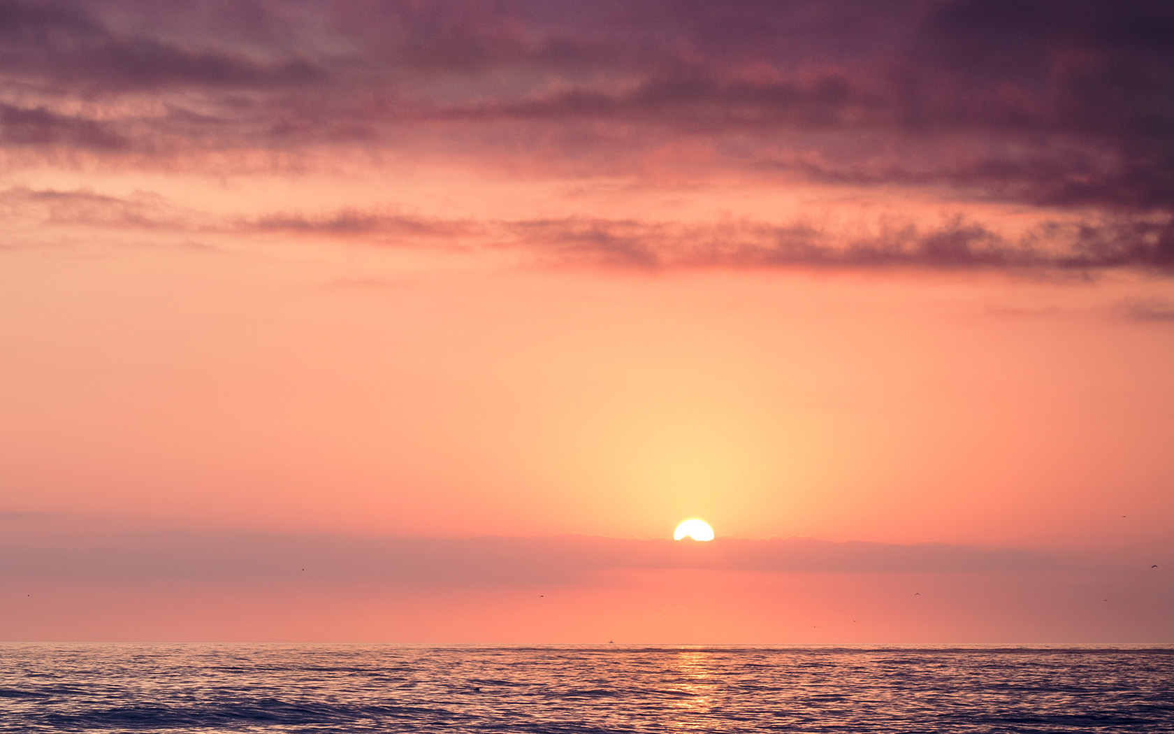 mx95-sunset-sea-beach-sky-shine-wallpaper