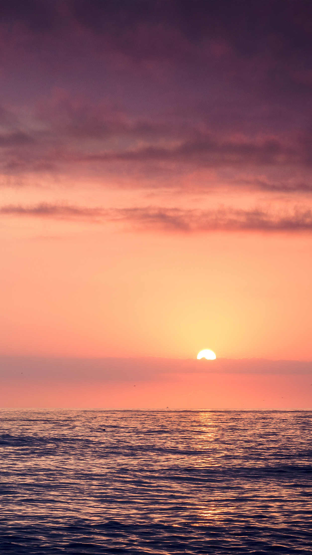 Iphone6papers Com Iphone 6 Wallpaper Mx95 Sunset Sea Beach Sky