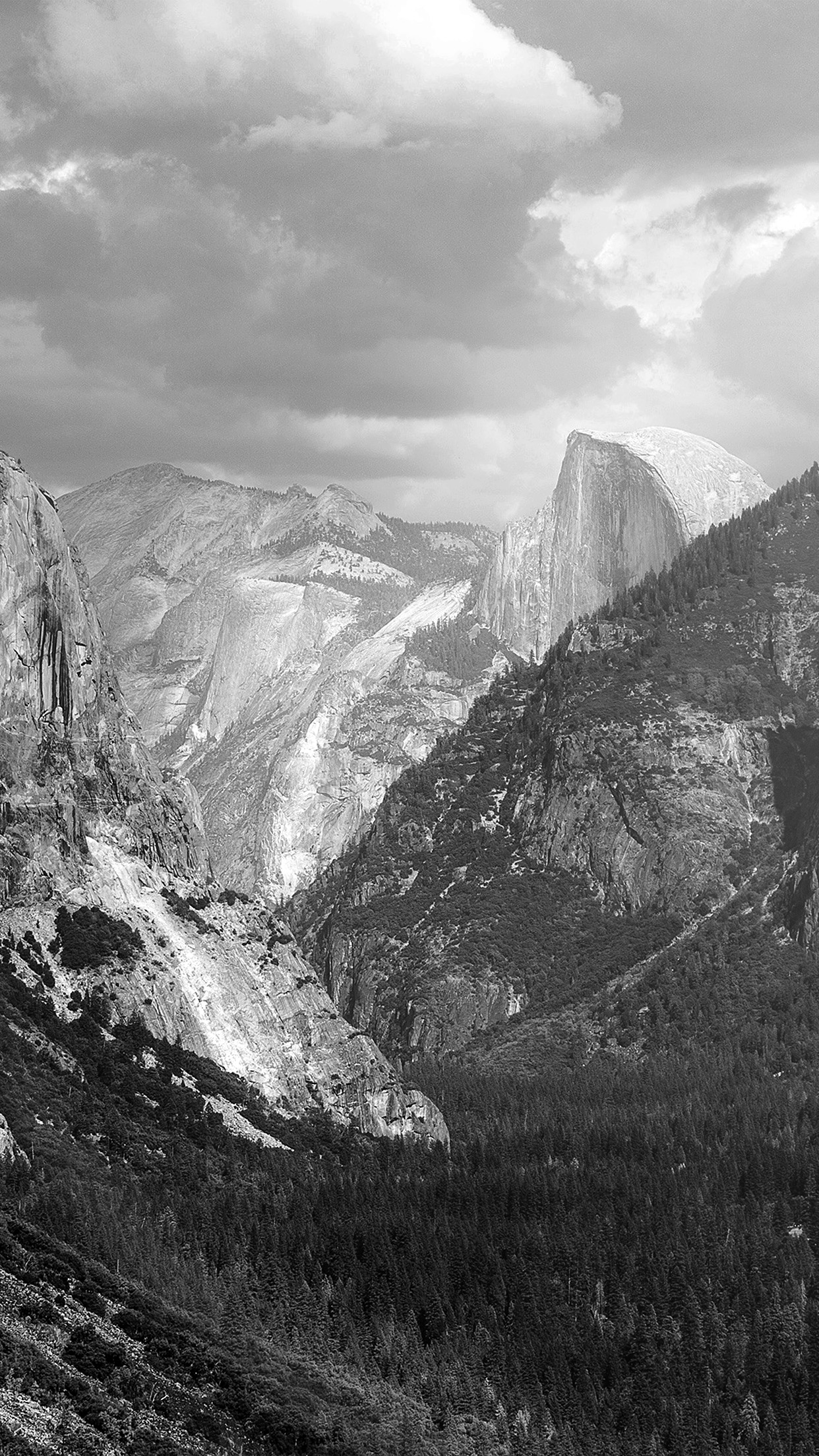 Iphonexpapers Com Iphone X Wallpaper My11 Yosemite Mountain Nature Rock Sky Forest Cloud Bw