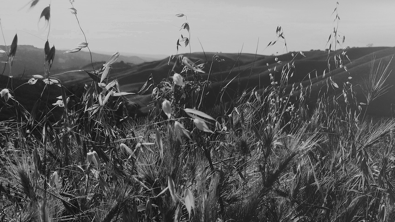 desktop-wallpaper-laptop-mac-macbook-air-my82-sunny-summer-day-green-grass-nature-mountain-bw-dark-wallpaper