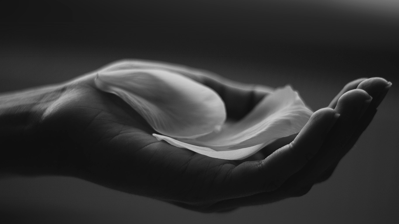 desktop-wallpaper-laptop-mac-macbook-air-my83-hand-flower-dark-bw-human-nature-wallpaper