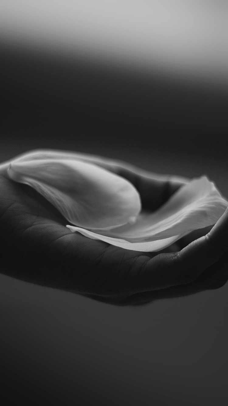 iPhone6papers.co-Apple-iPhone-6-iphone6-plus-wallpaper-my83-hand-flower-dark-bw-human-nature