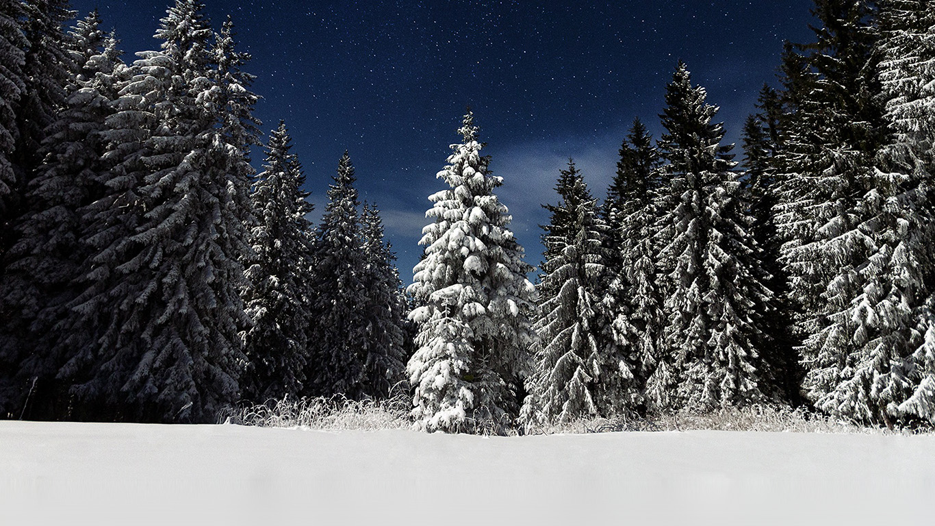 desktop-wallpaper-laptop-mac-macbook-air-mz23-snow-winter-wood-mountain-sky-star-night-wallpaper