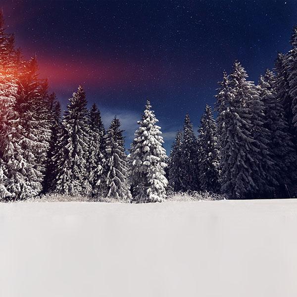 iPapers.co-Apple-iPhone-iPad-Macbook-iMac-wallpaper-mz24-snow-winter-wood-mountain-sky-star-night-flare-wallpaper