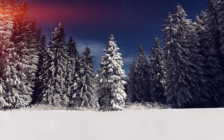 essay on winter night