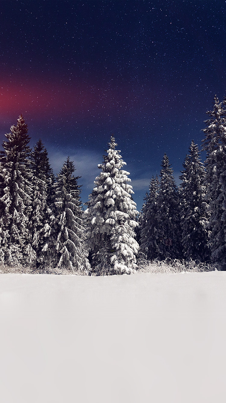 Papers.co-iPhone5-iphone6-plus-wallpaper-mz24-snow-winter-wood-mountain-sky-star-night-flare
