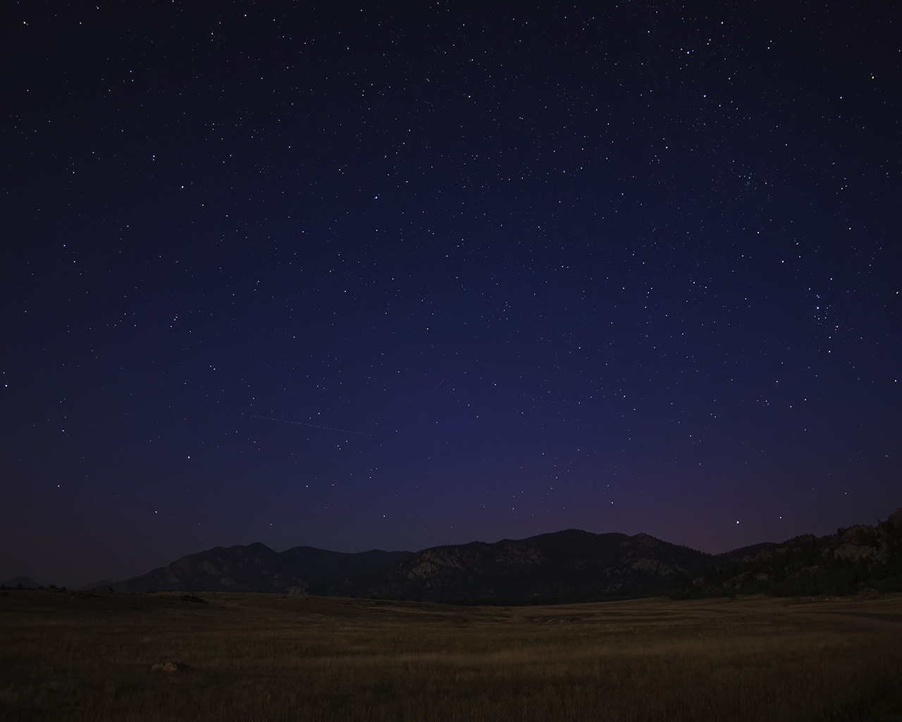 night essay starry night essay