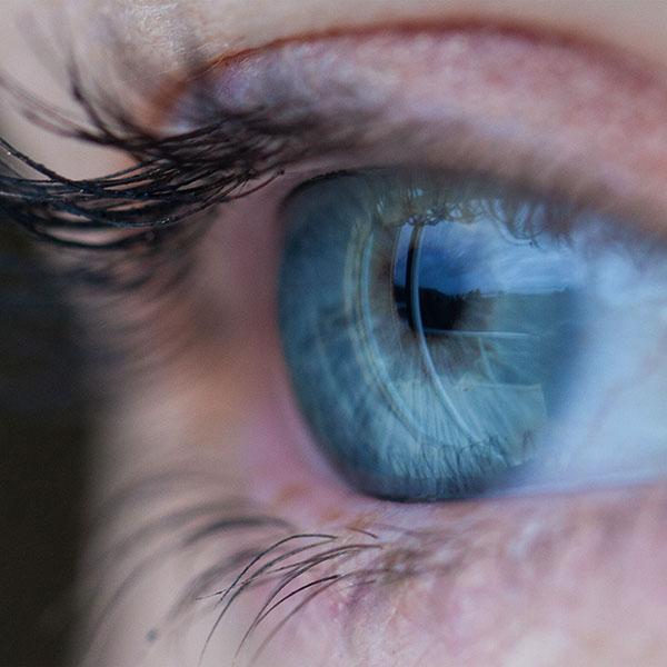 eyes essay