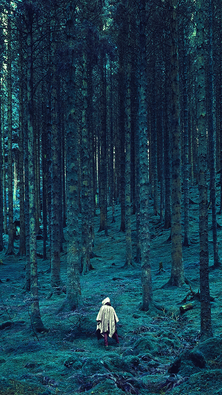 iPhone6papers.co-Apple-iPhone-6-iphone6-plus-wallpaper-na49-in-wood-forest-blue-mountain-nature