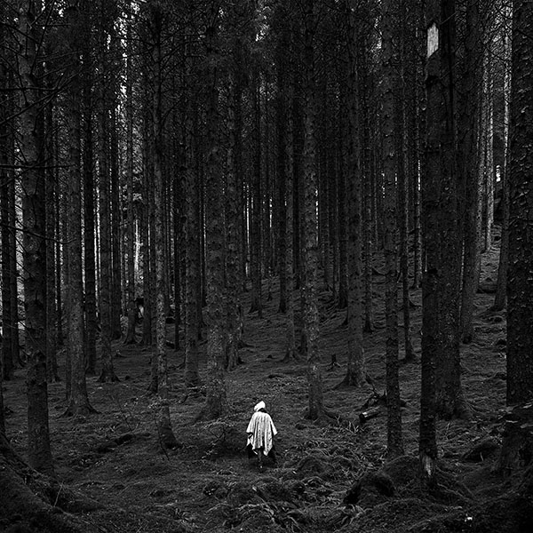 iPapers.co-Apple-iPhone-iPad-Macbook-iMac-wallpaper-na50-in-wood-forest-mountain-nature-dark-bw-wallpaper