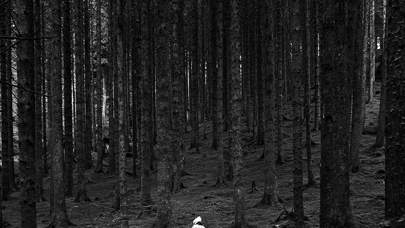 desktop-wallpaper-laptop-mac-macbook-air-na50-in-wood-forest-mountain-nature-dark-bw-wallpaper
