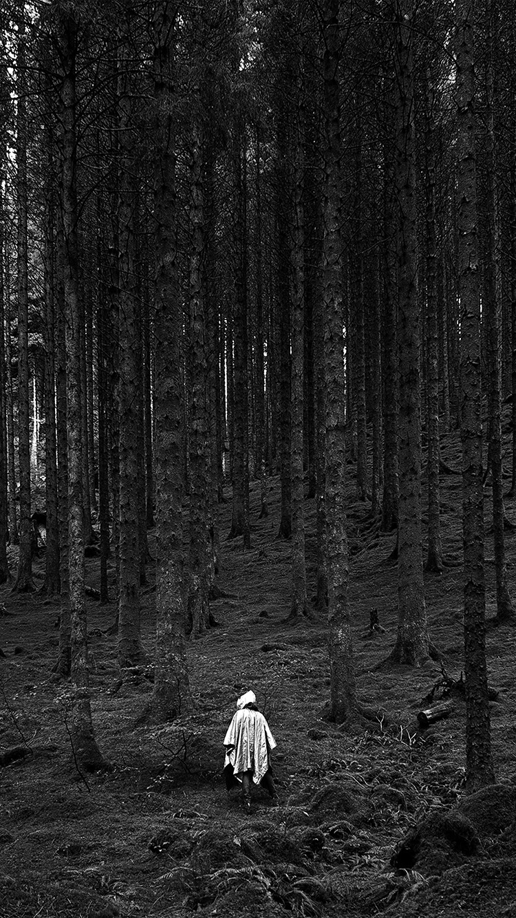 iPhonepapers.com-Apple-iPhone-wallpaper-na50-in-wood-forest-mountain-nature-dark-bw