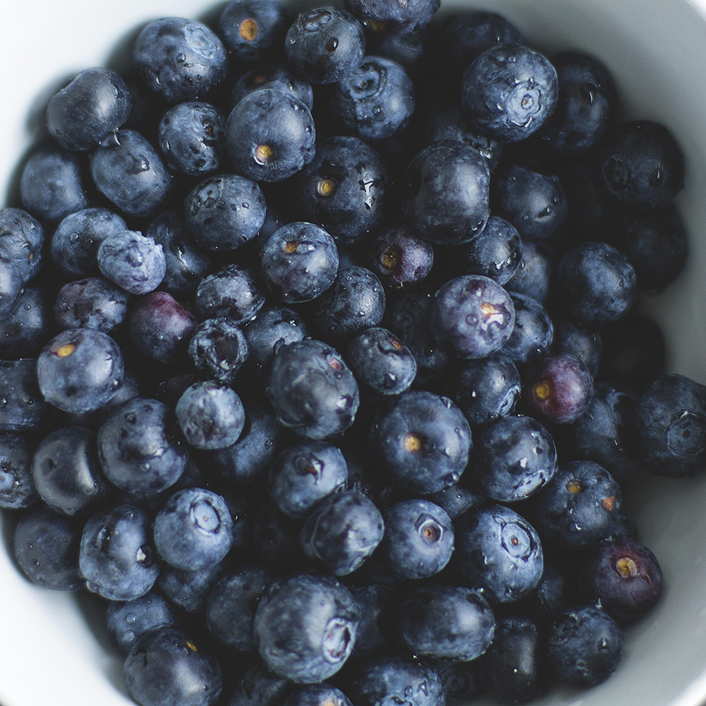 wallpaper-na76-blue-berry-healthy-fruit-eat-food-nature-wallpaper