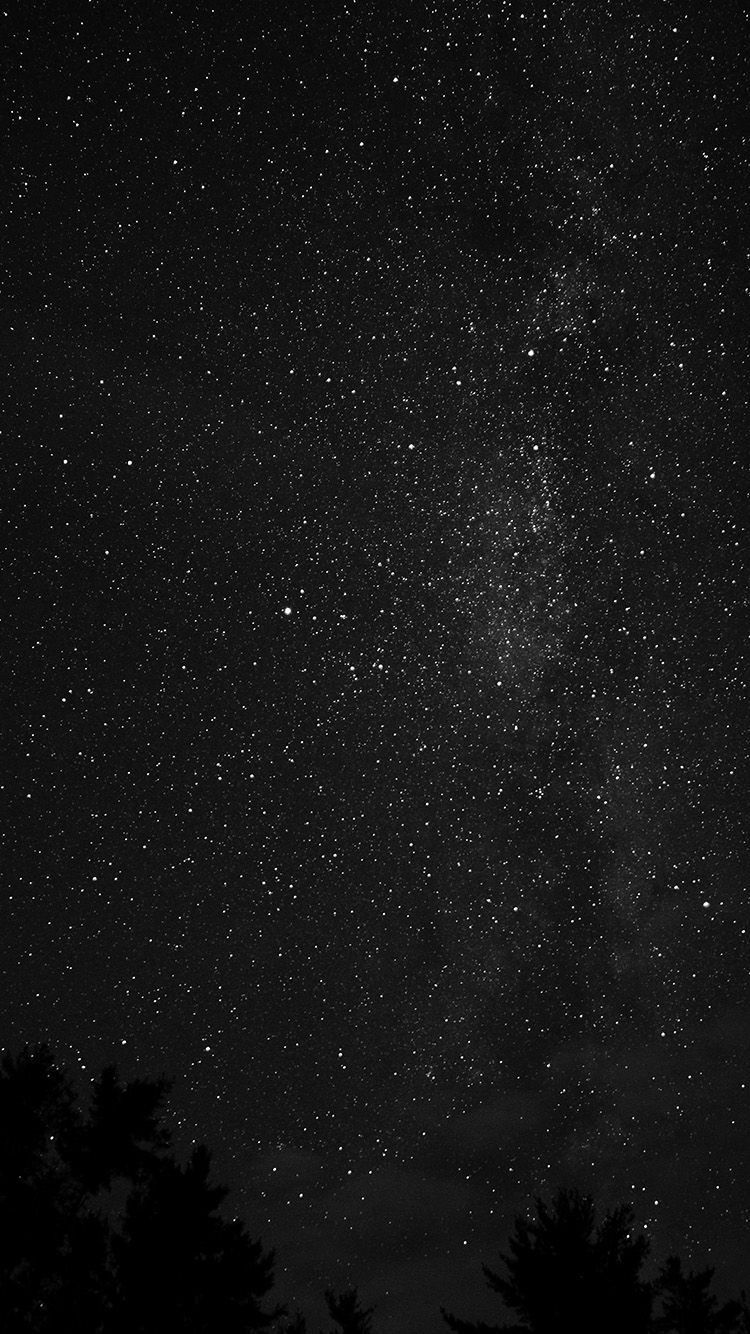 iPhone6papers.co-Apple-iPhone-6-iphone6-plus-wallpaper-na99-night-sky-milkyway-tree-wood-nature-bw-dark