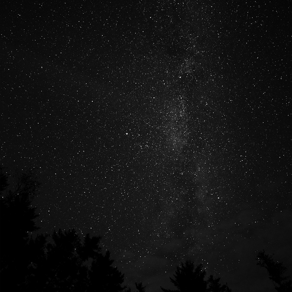 wallpaper-na99-night-sky-milkyway-tree-wood-nature-bw-dark-wallpaper