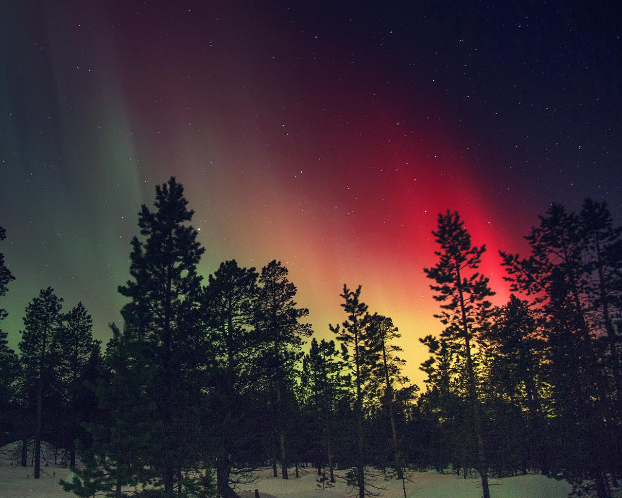 aurora very dark red - photo #17