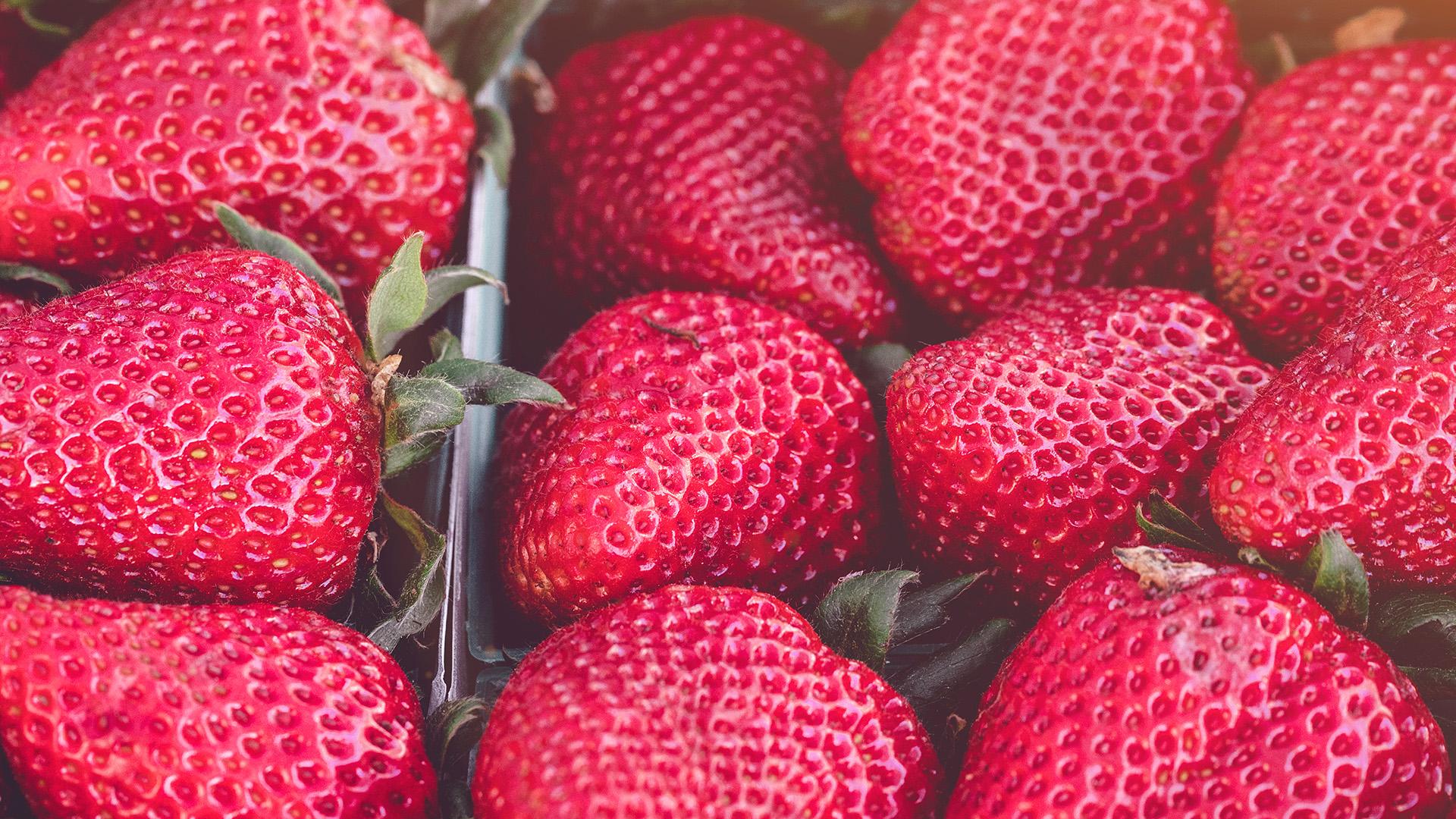 Strawberry New season In summary