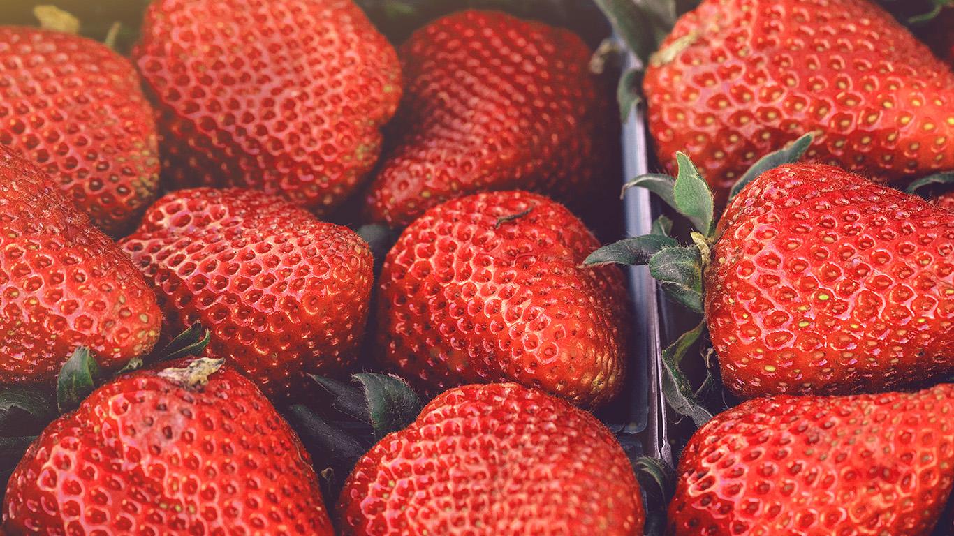 desktop-wallpaper-laptop-mac-macbook-air-nc19-strawberry-red-fruit-nature-spring-flare-delicious-wallpaper