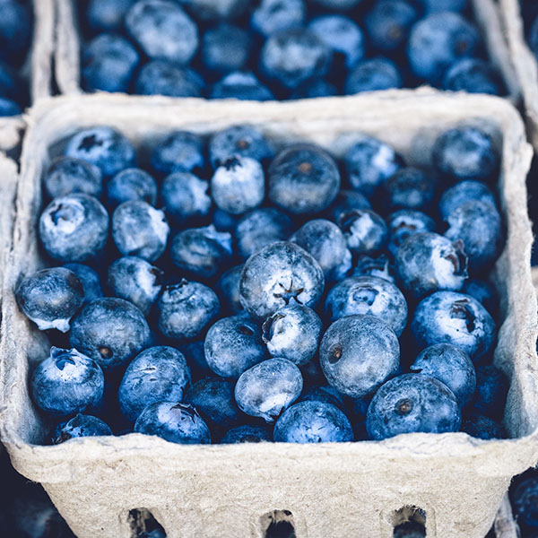 iPapers.co-Apple-iPhone-iPad-Macbook-iMac-wallpaper-nc20-blueberry-mart-fruit-nature-eat-food-wallpaper