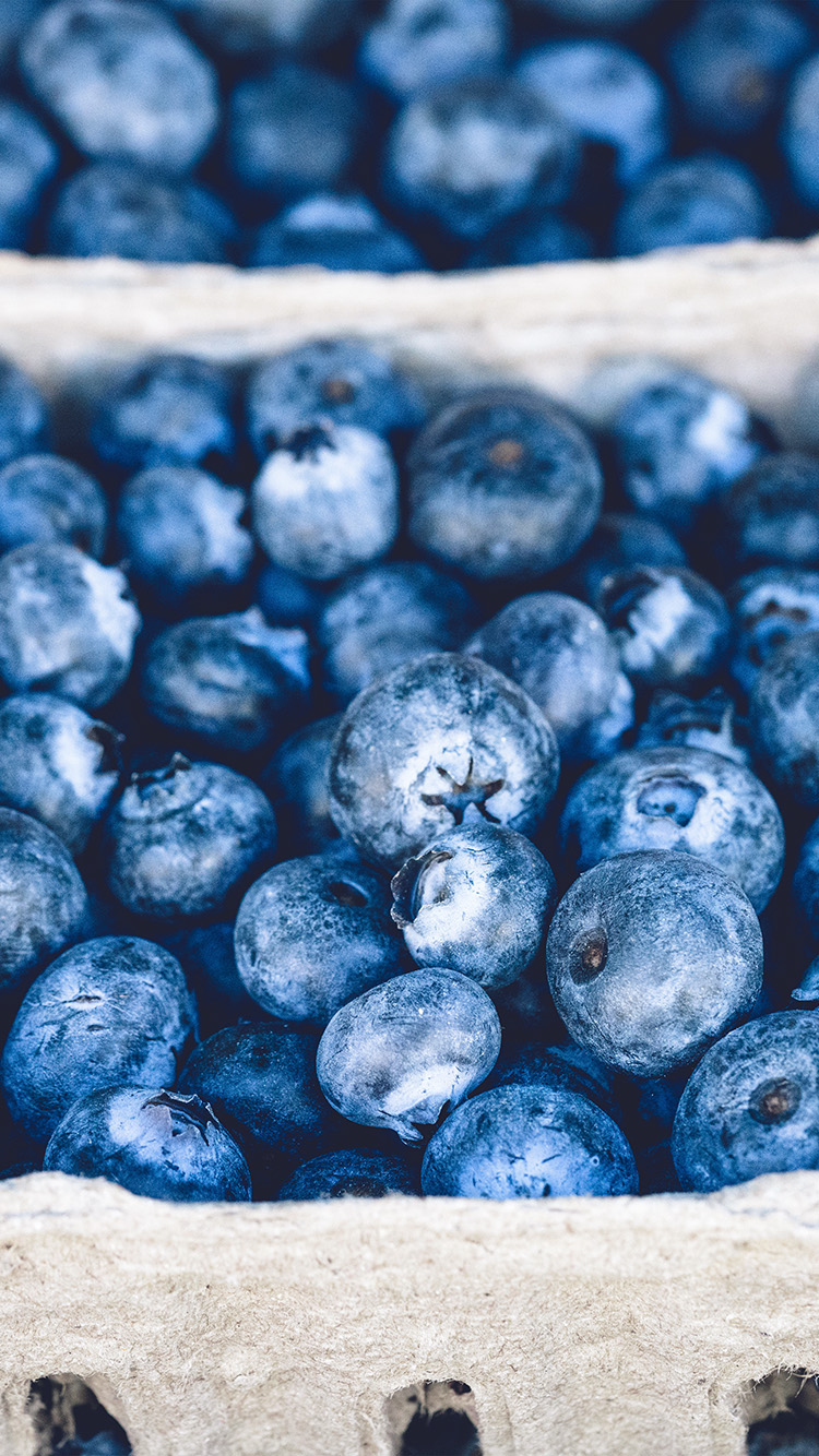 iPhonepapers.com-Apple-iPhone8-wallpaper-nc20-blueberry-mart-fruit-nature-eat-food