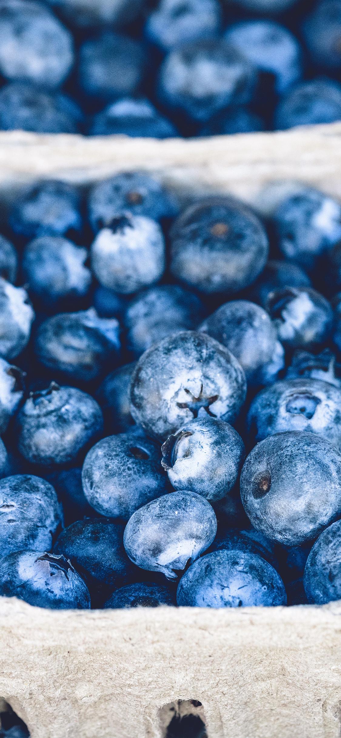 iPhoneXpapers.com-Apple-iPhone-wallpaper-nc20-blueberry-mart-fruit-nature-eat-food