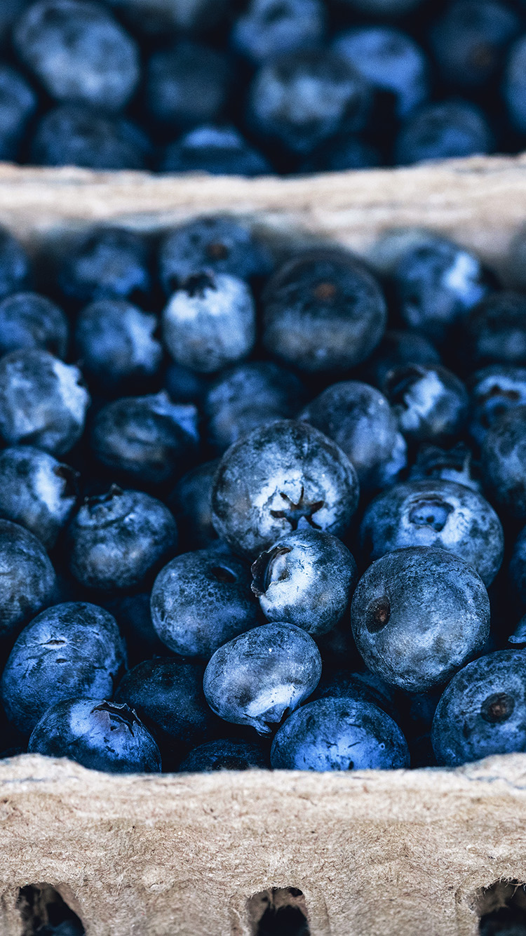 iPhonepapers.com-Apple-iPhone-wallpaper-nc21-blueberry-mart-fruit-nature-eat-food-love-spring