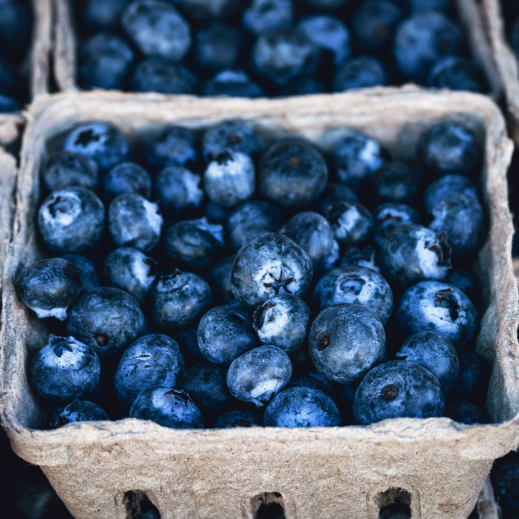 wallpaper-nc21-blueberry-mart-fruit-nature-eat-food-love-spring-wallpaper