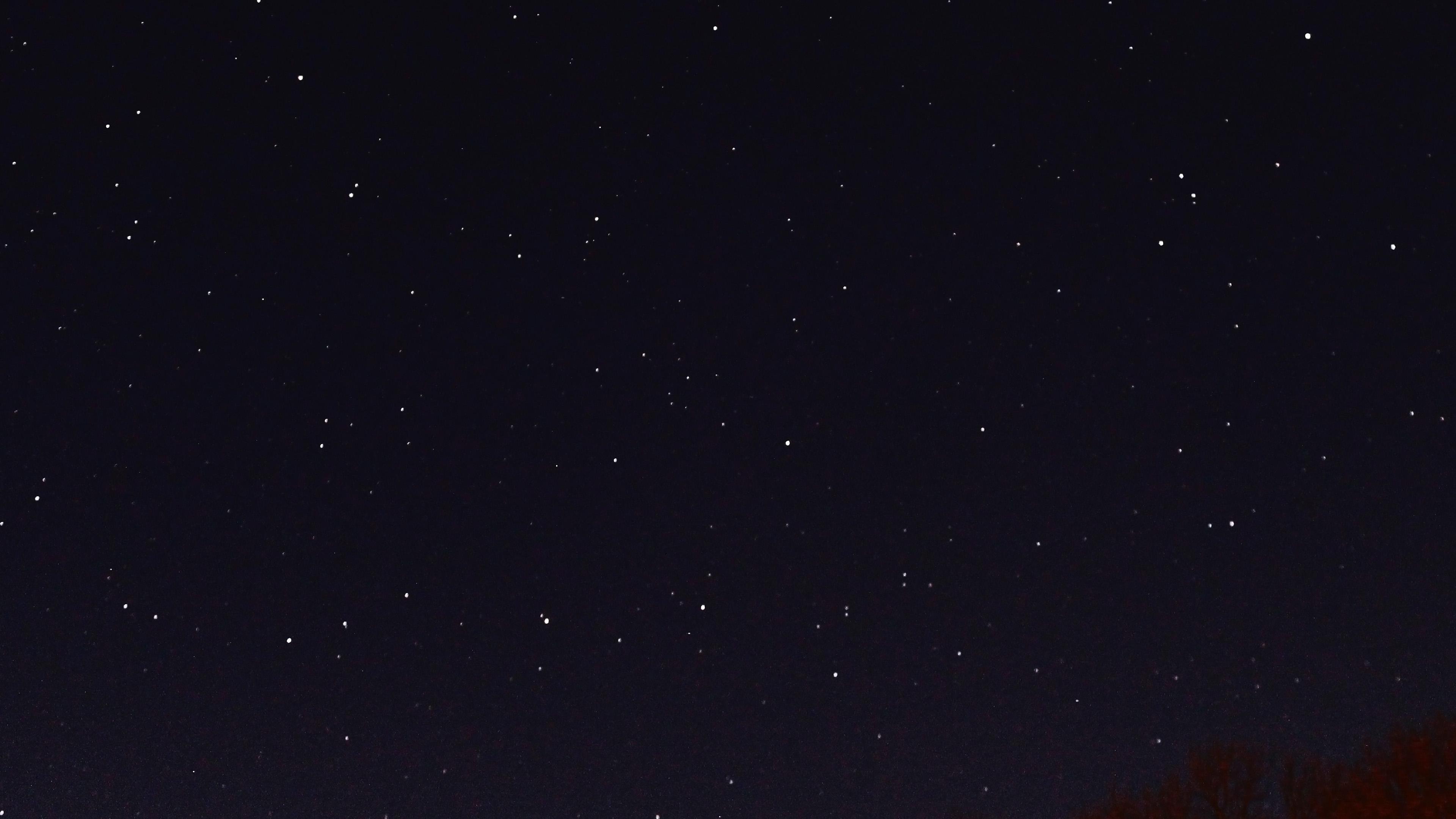 nc26-night-sky-dark-star-lights-tree-nature-wallpaper