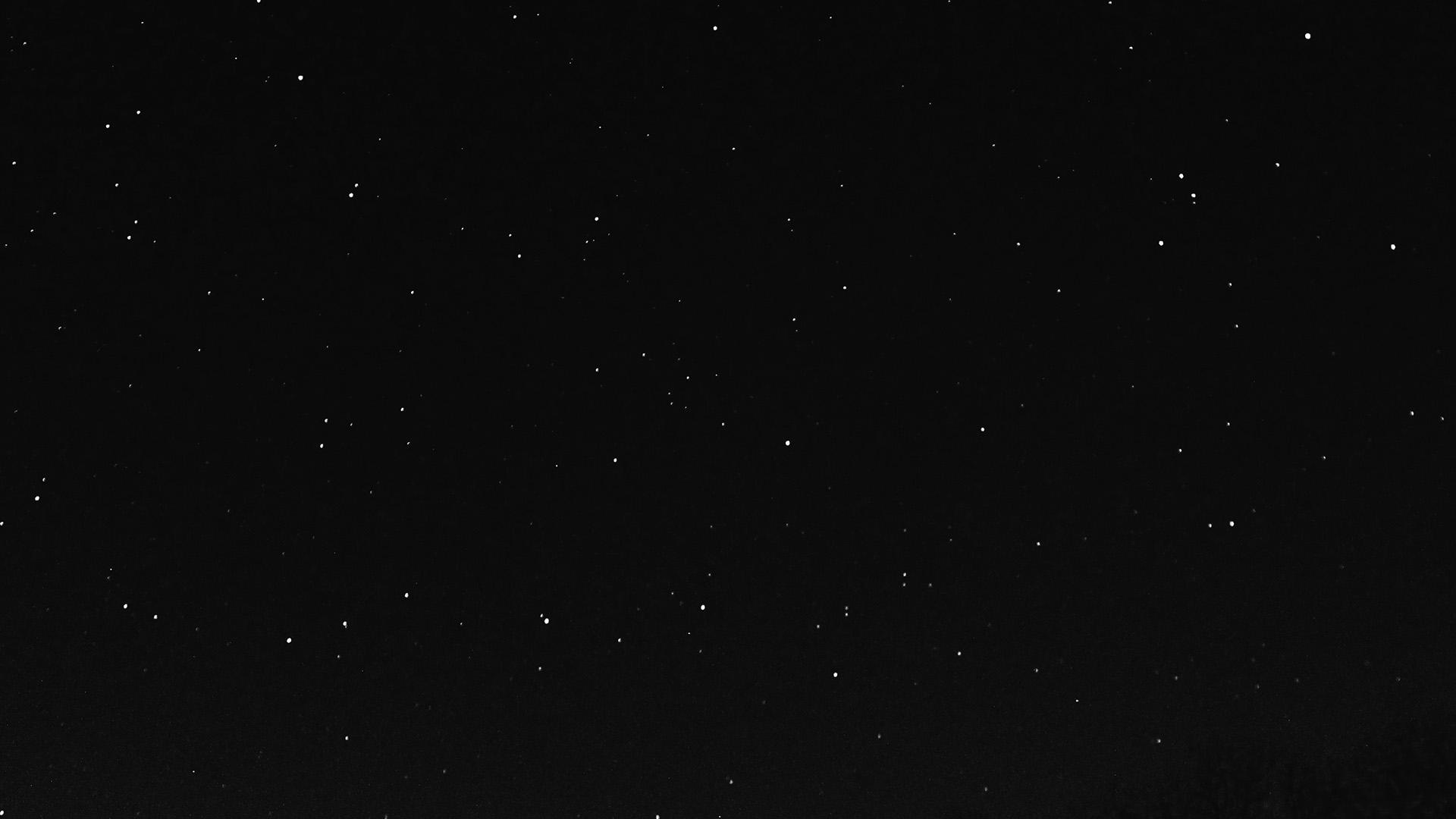 Nc27 Night Sky Dark Star Lights Tree Nature Bw Dark Wallpaper