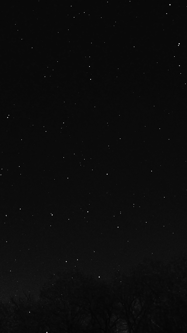 freeios8.com-iphone-4-5-6-plus-ipad-ios8-nc27-night-sky-dark-star-lights-tree-nature-bw-dark
