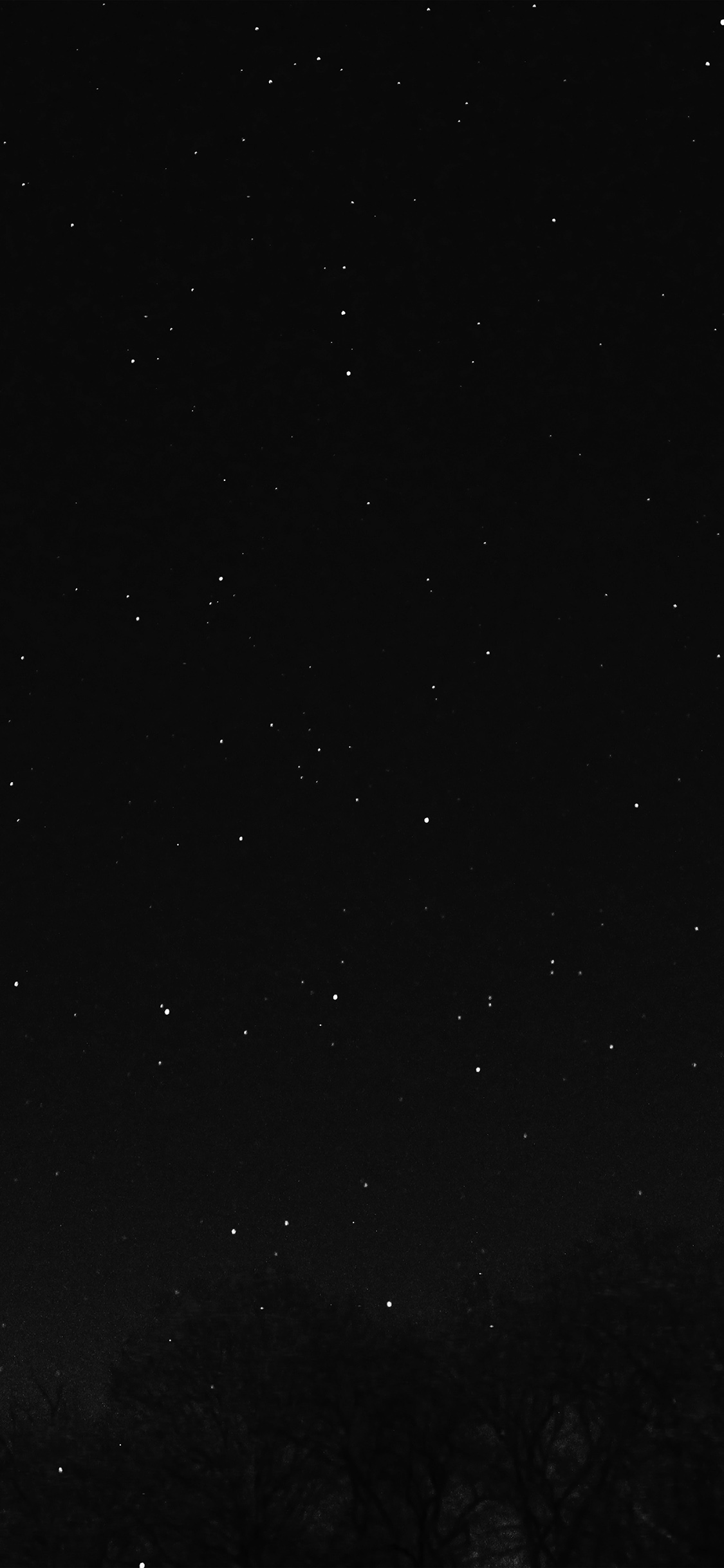 iPhoneXpapers.com-Apple-iPhone-wallpaper-nc27-night-sky-dark-star-lights-tree-nature-bw-dark