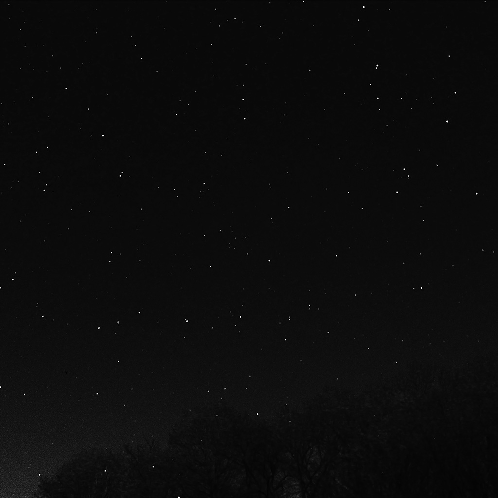 wallpaper-nc27-night-sky-dark-star-lights-tree-nature-bw-dark-wallpaper