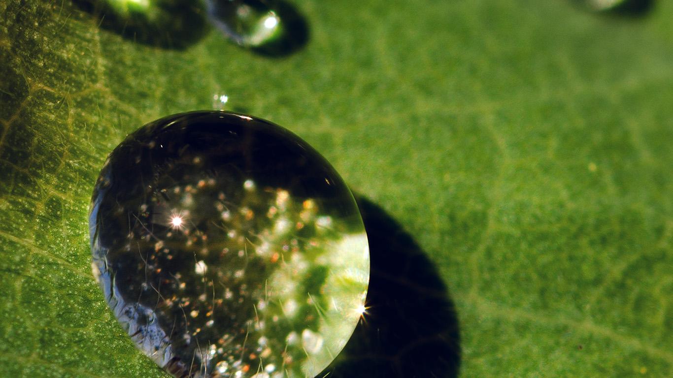 desktop-wallpaper-laptop-mac-macbook-air-nc70-nature-green-leaf-rain-drop-wallpaper