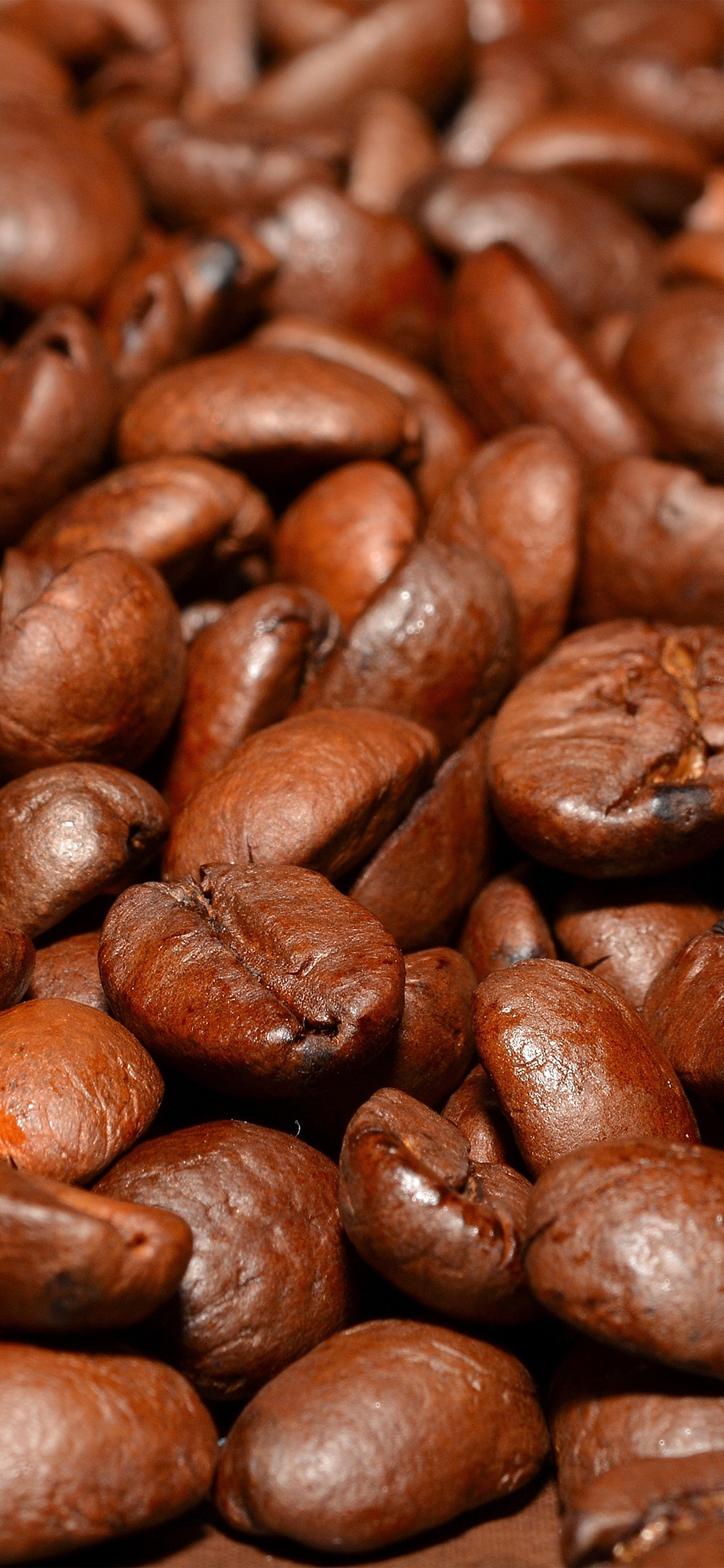 iPhoneXpapers.com-Apple-iPhone-wallpaper-nd53-coffee-bean-roasted-aroma