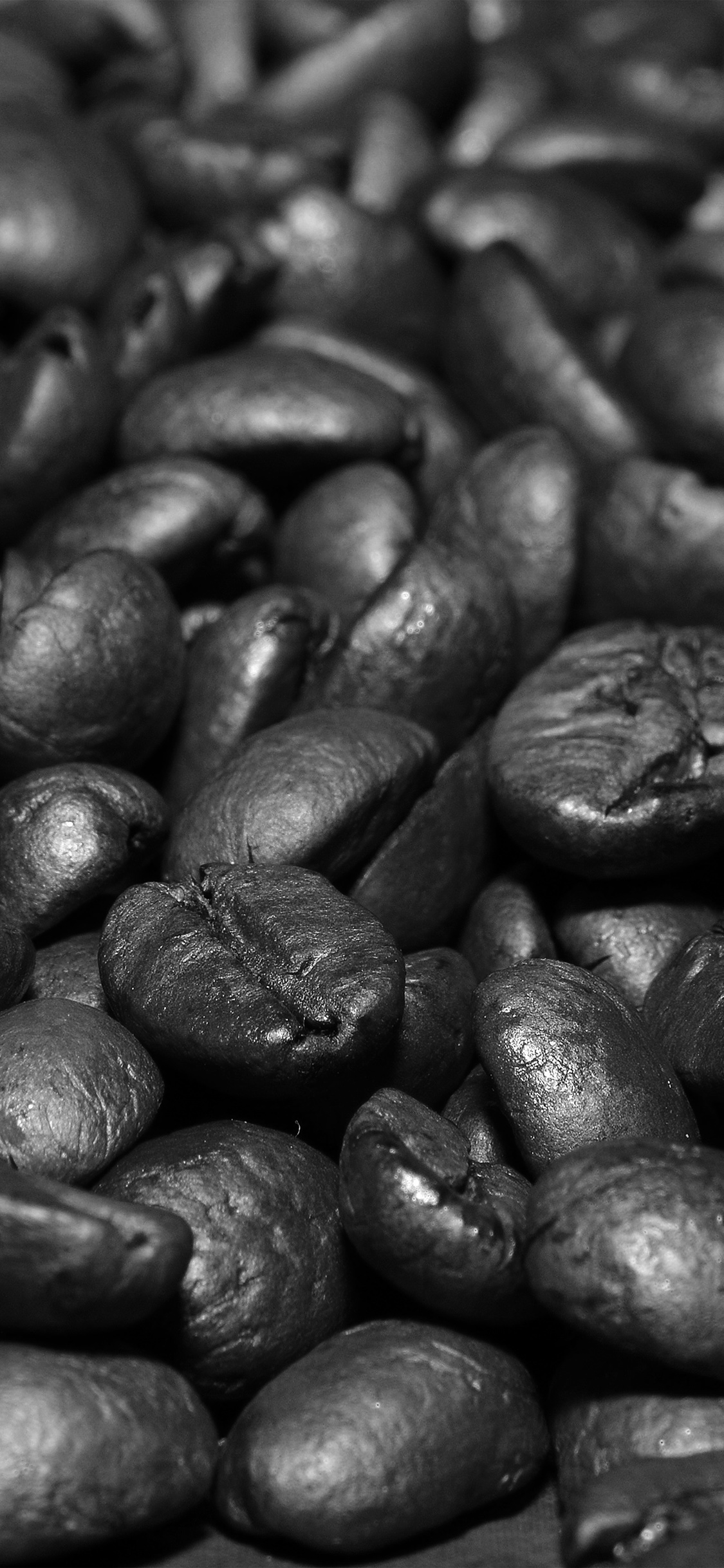 iPhonexpapers.com-Apple-iPhone-wallpaper-nd54-coffee-bean-roasted-aroma-dark-bw