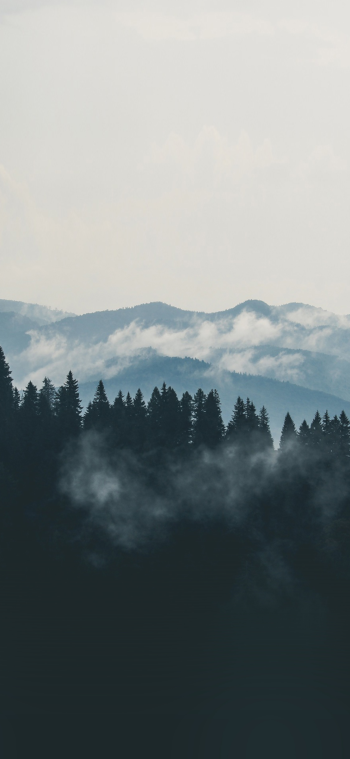 iPhoneXpapers.com-Apple-iPhone-wallpaper-nd57-mountain-fog-nature-view-wood-forest