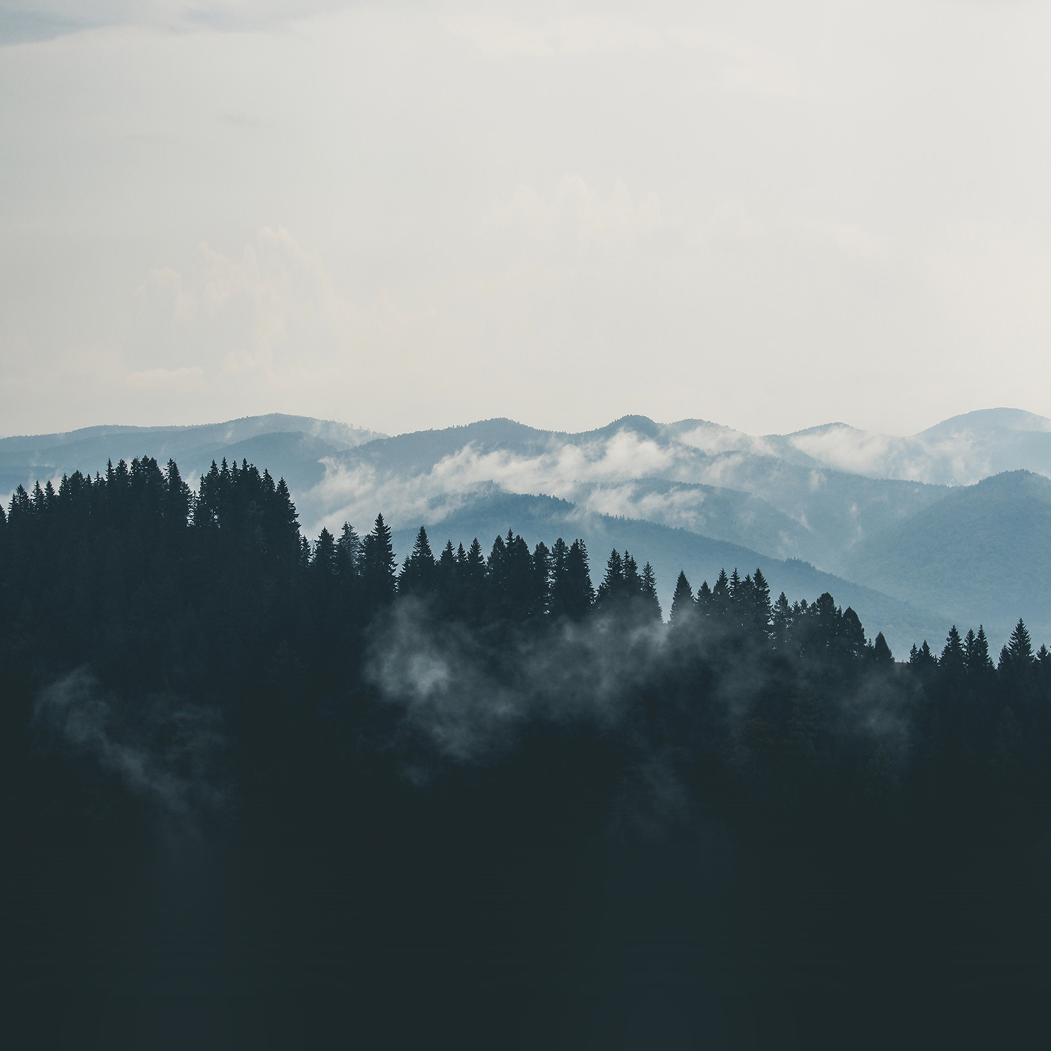 Popular Wallpaper Mountain Fog - papers  Gallery_225398.jpg