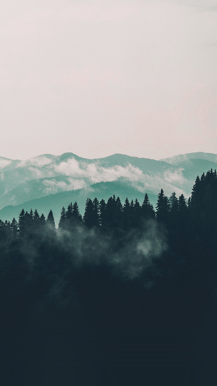 iPhone7papers.com-Apple-iPhone7-iphone7plus-wallpaper-nd58-mountain-fog-nature-view-wood-forest-blue