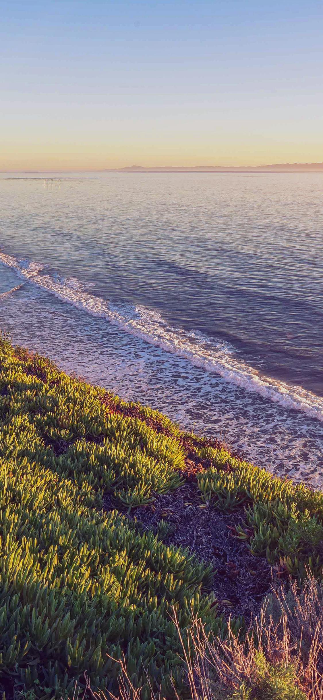 iPhonexpapers.com-Apple-iPhone-wallpaper-ne27-peace-nature-wood-sea-ocean-nature-flare